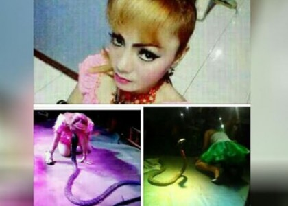 irma-bule-tewas-dipatuk-kobra-di-atas-panggung